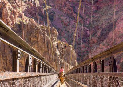 bottom-of-grand-canyon