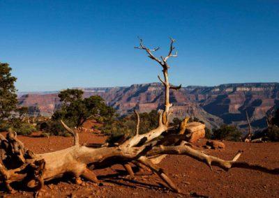grand-canyon-4
